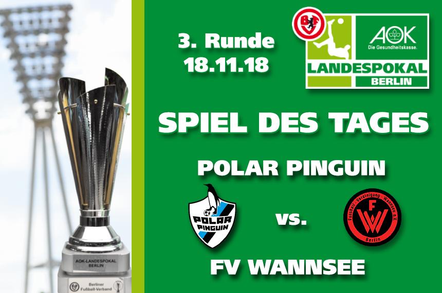 Spiel Des Tages Polar Pinguin Vs Fv Wannsee ǀ Berliner Fußball